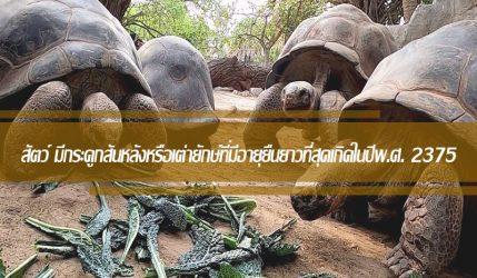 สัตว์ มีกระดูกสันหลังหรือเต่ายักษ์ที่มีอายุยืนยาวที่สุดเกิดในปีพ.ศ. 2375